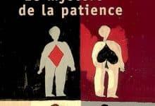 Jostein Gaarder - Le mystere de la patience