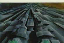 Bertrand Passegue - Le monolithe noir