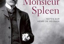 Bernard Quiriny - Monsieur Spleen