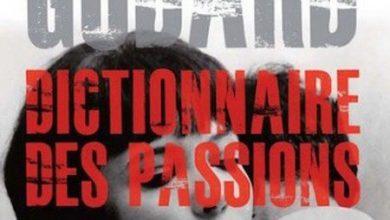 Jean Luc Godard - Dictionnaire des passion