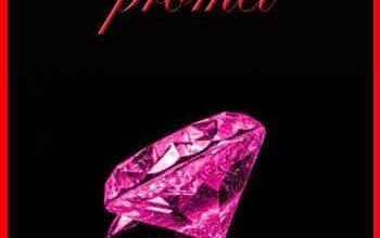 Valentine Leroy - Ce qu'il promet