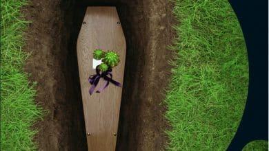Catherine Monce - On ne fleurit pas les tombes avec des cactus