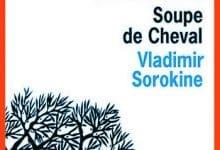 Vladimir Sorokine - Soupe de cheval