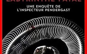 Douglas Preston - Labyrinthe fatal