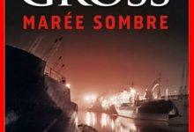 Andrew Gross - Marée sombre