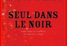 Paul Auster - Seul dans le noir