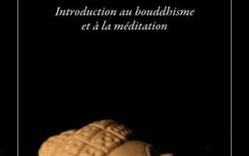 Rob Nairn - Qu'est-ce que la méditation ?