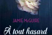 Jamie McGuire - À tout hasard
