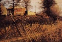 Claude Amoz - Bois-Brûlé