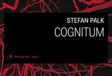 Stephan Palk - Cognitum
