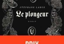 Stéphane Larue - Le plongeur