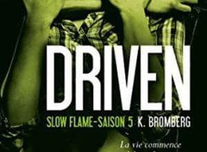 K Bromberg - Driven, Tome 5