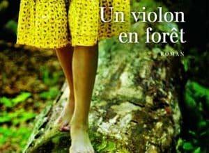 Didier Cornaille - Un violon en forêt
