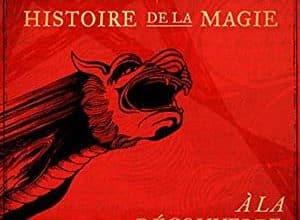 Harry Potter - Histoire de la magie - Tome 1